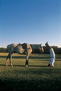 Polo Player Inversion Practice